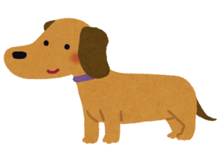 dog_miniature_dachshund.png